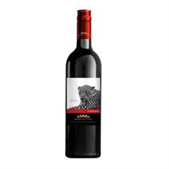 Africa Five Pinotage - Waterstone Wines